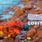 ロブスター漁が始まりました!~食べる編~